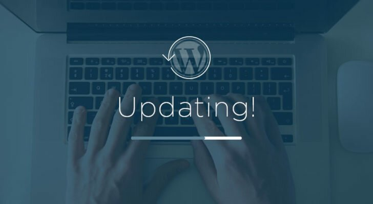 Why do you need to update the WordPress website