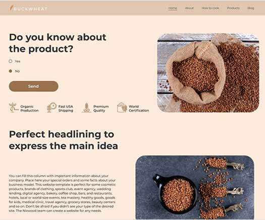 WordPress web design template