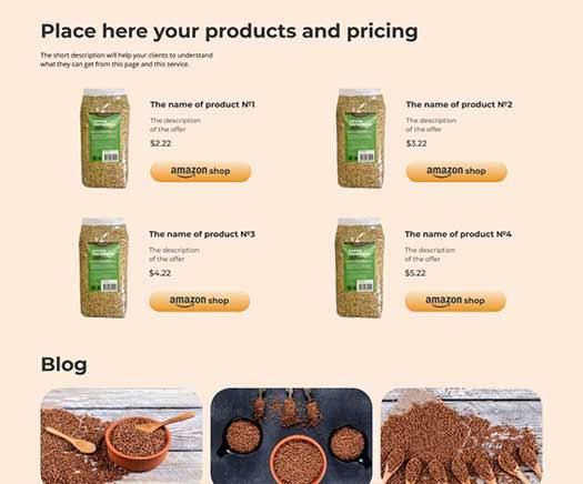 website design companu