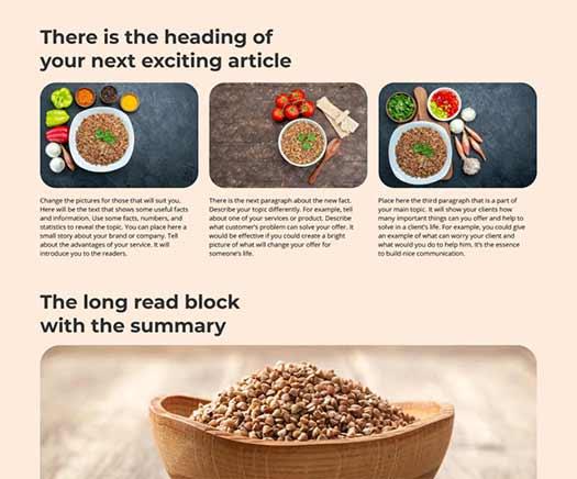 wordpress web template design